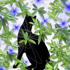 KY Cady - Spring Cat