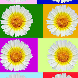 Mariola Bitner - Spring Collage