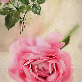 Darren Fisher - Spring Elegance
