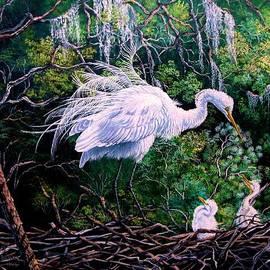 Daniel Butler - Spring Glory- Snowy Egrets