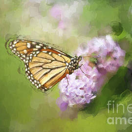 Darren Fisher - Spring Lilacs