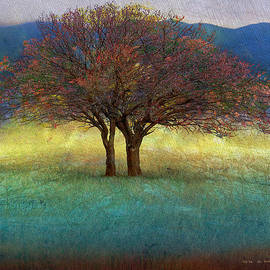 R christopher Vest - Spring Lone Tree