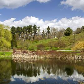 Christina Rollo - Spring Reflection Landscape
