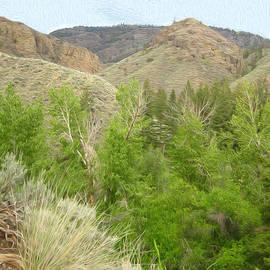 Kathy Bassett - Spring Returns to the Valley