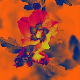 Sonali Gangane - Spring Spirit