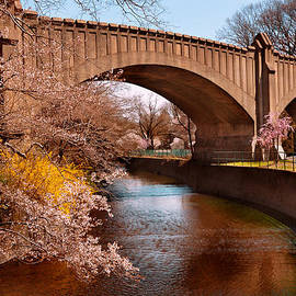Mike Savad - Spring - Springtime in Newark