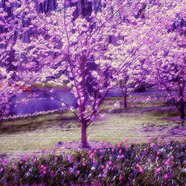 Jenny Rainbow - Spring Wonderland Pastel. Garden Keukenhof. Netherlands