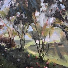 Donna Tuten - Springtime