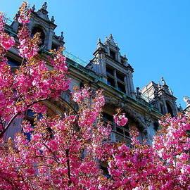 Jeff Heimlich - Springtime on Commonwealth Avenue