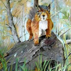 Hendrik Hermans - Squirrel
