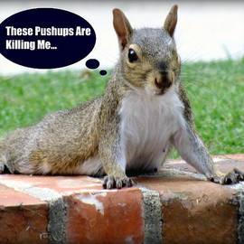 Karen Wiles - Squirrely Push Ups