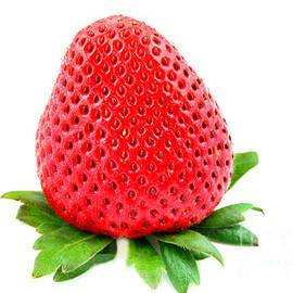Srawberry on White