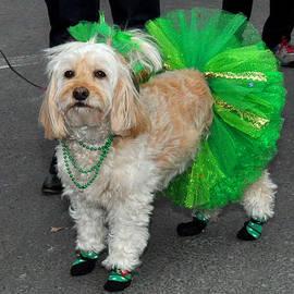 Diane Lent - Green wearing Dog for St. Patrick