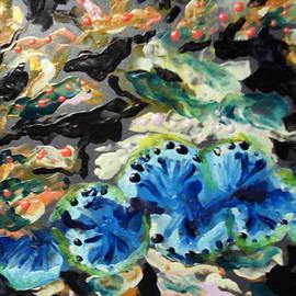 Staghorn Coral Reef