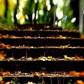 Reka Lendvai - Stairs to Heavan