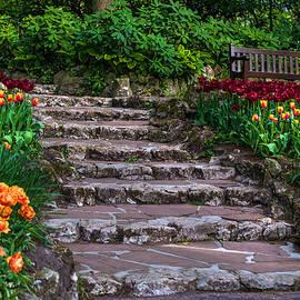 Jenny Rainbow - Stairs with Tulips. Keukenhof Garden. Netherlands
