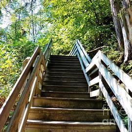 Judy Via-Wolff - Stairway to Somewhere