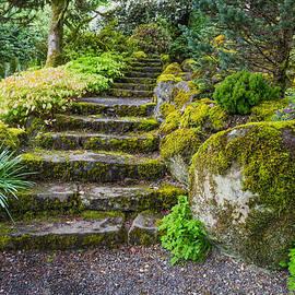 Priya Ghose - Stairway To The Secret Garden