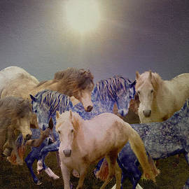 Patricia Keller - Stallions On Stage As Vivaldi