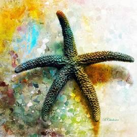 Barbara Chichester - Starfish Impression