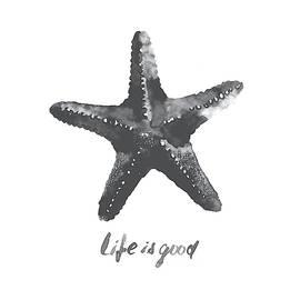 Starfish - Fine Art