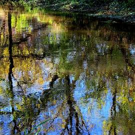 Karen  Majkrzak - Starkweather Creek Reflections