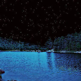 Renee Anderson - Beauty in a Starry Midnight Lake