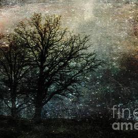 Randi Grace Nilsberg - Starry Night