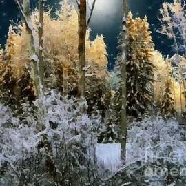 RC deWinter - Starshine on a Snowy Wood