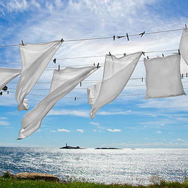 Donna Doherty - Star Island Fresh Laundry