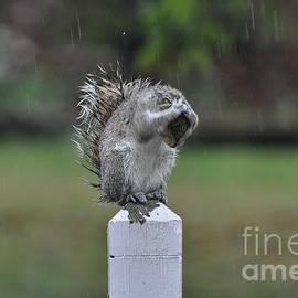 Krista Hott - Raindrops Keep Falling on My Head
