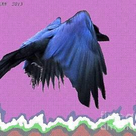 Taikan Nishimoto - Stealth Crow