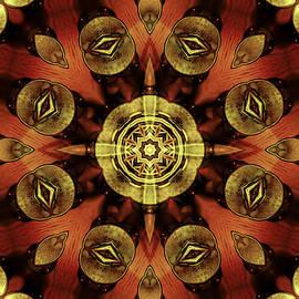 Shawna  Rowe - Steampunk Kaleidoscope