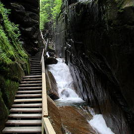 Christiane Schulze Art And Photography - Steps And Stairs Franconia Notch