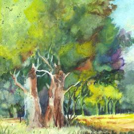 Carol Wisniewski - Sterling Forest