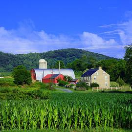 Raymond Salani III - Stewartsville Farm