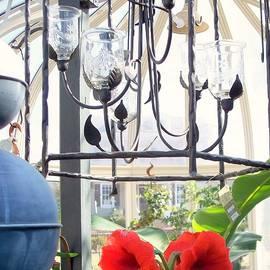 Rick Todaro - Still Life Orchids