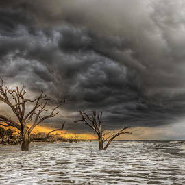 Douglas Berry - Still Standing - Boneyard Beach Thunderstorm