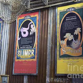 Steven Parker - Stinger Slimer Consumer