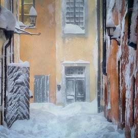 Gun Legler - Stockholm in winter