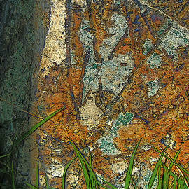 Lenore Senior - Stone Abstract 2