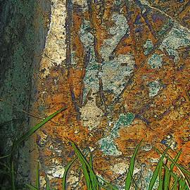 Lenore Senior - Stone Abstract 2