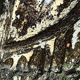 Lenore Senior - Stone Abstract 3