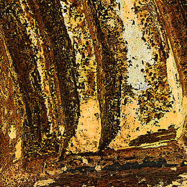 Lenore Senior - Stone Abstract 5