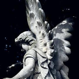 Karen E Camilleri - Stone Angel