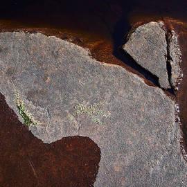 Jouko Lehto - Stone Angel of Haukkajarvi