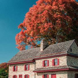 Don Johnson - Stone House and Tree
