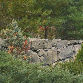Muriel Levison Goodwin - Stone Wall Surrounded by Summer