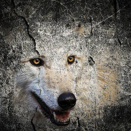 Steve McKinzie - Stone Wolf