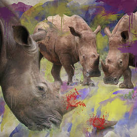 Ronel Broderick - Stop Rhino Poaching South Africa